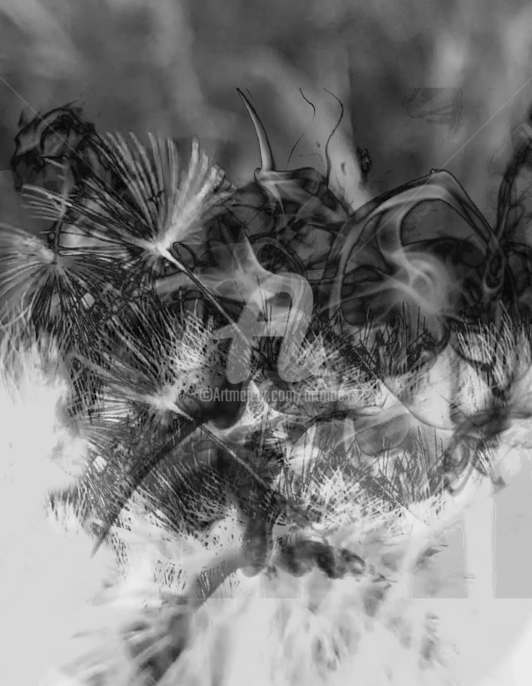 Art Moé - Black&White