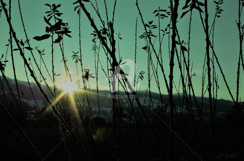 Art Moé - SUN Light