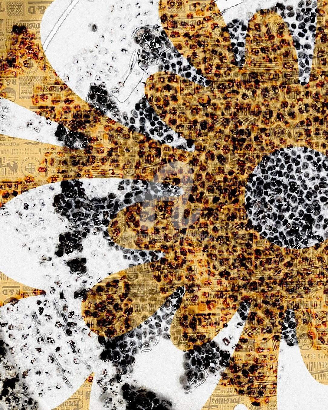Art Moé - Flower PoP Bernstein #2