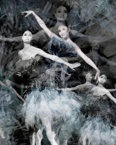 Prima Ballerina's