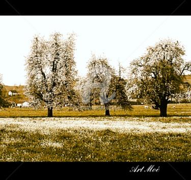 Trees Primetime