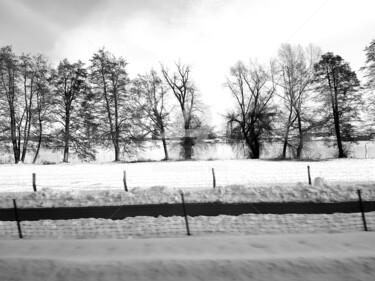 WinterWonderland #1